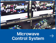 Microwave Control System